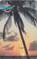 St. Eustatius - Teccom, EUS-T-03a, Sunset & Palms, 2 Scans.    GEM5 (Red) - Antilles (Neérlandaises)