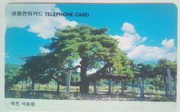 4800 Won Tree - Corée Du Sud