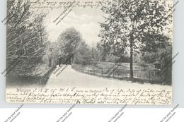 0-7250 WURZEN, Partie Im Stadtpark, 1905 - Wurzen