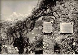 GOLFO PARADISO - PUNTA CHIAPPA - EREMO DI LORD BYRON  (GE) - Genova (Genoa)