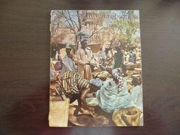Tropiques. Revue Des Troupes D'Outre Mer (Coloniales). Mars 1961. Coloniale. - Revues & Journaux