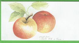 """POMME """" Belle Fille De Creuse """" - Magnifique Carte D'une Aquarelle De Jeannette Buvat (Creuse) - Flores, Plantas & Arboles"""