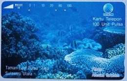100 Units Underwater Corals - Indonésie