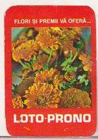 Romanian Small Calendar - 1981 Loto-Pronosport  - Lottery Calendar - Petit Format : 1981-90