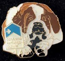 CHIEN - DOG - HUND - CANE - PERRO - SAN ARENA REITUNGS SCHULE - SAINT BERNARD - SUISSE - SCHWEIZ - (JAUNE) - Tiere
