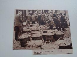 """Origineel Knipsel ( 5202 ) Uit Tijdschrift """" Zondagsvriend """"  1936 :  Oostende  Ostende   Garnaalmarkt - Vieux Papiers"""