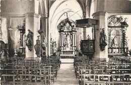 Borsbeek : St. Jacobus Kerk / Binnenzicht - Borsbeek