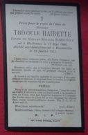 ANDENNE - BONNEVILLE - Faire-part De Décès Accidentel De Théodule HAIBETTE - 19 Juillet 1915 - Décès