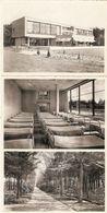 """Brasschaat : Domein """" Hof Ten Bosch """"  --- 6 Kaarten - Brasschaat"""