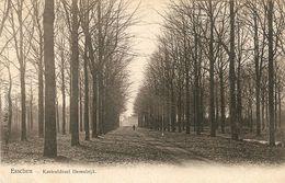 Esschen / Essen : Kasteeldreef Hemelrijk 1907 - Essen