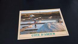 CARTE POSTALE La Côte D 'Amour - Les Marais Salants En L'état Sur Les Photos - France