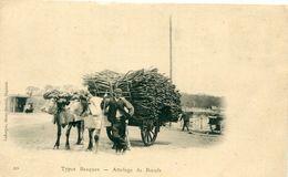 64 - - Pays Basque : Types Basques - Attelage De Boeufs - Ohne Zuordnung
