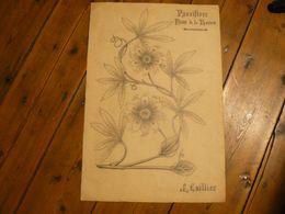 Dessin Passiflore, Fleur De La Passion. 51.5 X 35 Cm. Au Dos Divers Dessins. Signé J.Caillez - Dessins