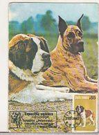 Romanian Small Calendar - 1989 - Dogs - Petit Format : 1981-90