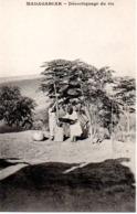 MADAGASCAR  DECORTICAGE DU RIZ - Madagascar