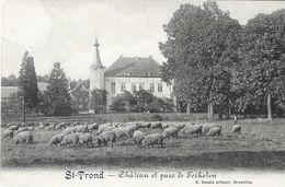1088) Sint-Truiden - Chateau Et Parc De Terkelen - Sint-Truiden