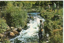 Pêche Pêcheurs à La Ligne Animée Pêche à La Truite Torrent - Pesca