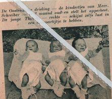 OOSTENDE..1938.. DE DRIELING VAN MEVR. SCHEIBER TWEE MAANDEN OUD - Vieux Papiers