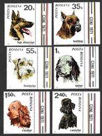 Romania. 1971 Dogs. MNH - Nuovi