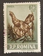 """ROUMANIE YT 1446 OBLITÉRÉ """"COQ DE BRUYERE"""" ANNÉE 1956 - 1948-.... Repubbliche"""