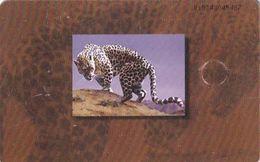 U.A.E.(chip) - Arabian Leopard, Chip GEM1B, CN : 0101, Used - Emirats Arabes Unis