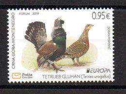 Europa CEPT 2019 Montenegro Birds 1 Stamp MNH - 2019