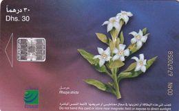 U.A.E.(chip) - Flower 7/Rhazya Stricta, CN : 004N, Used - Emirats Arabes Unis