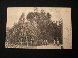 LOUVAIN 1907 - LA VIEILLE TOUR DES ANCIENNES FORTIFICATIONS AU PARC - Leuven