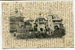 CPA - Carte Postale - Belgique - Dinant - Château De La Haut - 1899 (I13051) - Dinant