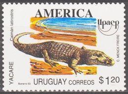Uruguay 1993 - Caïman à Museau Large (Caiman Latirostris) - Unclassified