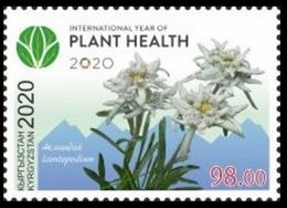 Kyrgyzstan 2020 International Year Of Plant Healt. - Kyrgyzstan