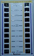 LESTRADE :   36095 X  PELERINAGE NOTRE-DAME DU SACRE-COEUR   ISSOUDUN - Visores Estereoscópicos