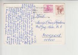 "Slovenia FLAM ""DENARNE POSLE ZAUPAJTE... MARIBOR PTUJ"" 1987 (fl498) Maksim Gaspari Postcard - 1945-1992 Repubblica Socialista Federale Di Jugoslavia"