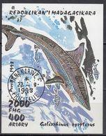 MADAGASKAR 1993 -  Block 210 Hundshai - Madagaskar (1960-...)