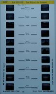 LESTRADE :  5271  LA  SUISSE :  LES RIVES DU LÉMAN - Visores Estereoscópicos