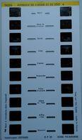 LESTRADE :  9026   ANIMAUX DE CIRQUE ET DE ZOO  6 - Visores Estereoscópicos