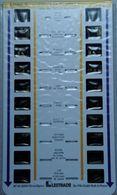 LESTRADE :  17085 X    ZOO DE LA PALMYRE  1 - Visores Estereoscópicos
