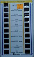 LESTRADE :      17521 D EX  AQUARIUM DE LA ROCHELLE  1 - Visores Estereoscópicos