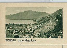 Carte Neuve Illustrée N° 182 - 0361 C ( TENERO Lago Maggiore ) - Stamped Stationery