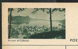 Carte Neuve Illustrée N° 182 - 0202 C ( Kurort VITZNAU ) - Stamped Stationery
