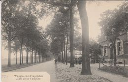 Westmalle ,   Trappisten : Café De La Campine - Malle