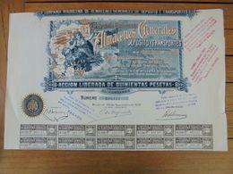 ESPAGNE - MADRID 1905 - CIE MADRILENE D EALMACENES DE DEPOT ET DE TRANSPORT - ACTION DE 500 PTS - Acciones & Títulos