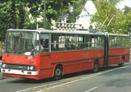 BUS * AUTOBUS * TROLLEY * TROLLEYBUS * IKRUS 280T * BKV * BUDAPEST ZOO * FLAG * Reg Volt 0187 * Hungary - Bus & Autocars