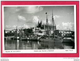 CPA (Ref A359) Palma  De   MALLORCA (ESPAGNE) Detalle Del Puerto Y Catedral - Mallorca