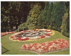 (C 30)  New Zealand - Christchurch Flower Clock - Nouvelle-Zélande