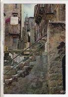 Cp Sartene Vieille Rue Et Le Clocher - Sartene