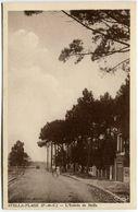 Cucq, Stella Plage, L'entrée, Non Circulé - Montreuil