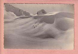 OLD PHOTO POSTCARD -  SWITZERLAND - SCHWEIZ - WINTERSPORT - SKI - ADELBODEN -  ED. KLOPFENSTEIN NR. 3446 - BE Berne
