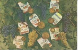Romania - Wine Labels - White Wine And Red Wine - Etiquette - Pinot Noir Cabernet Sauvignon - Unused Postcard - Collezioni & Lotti