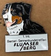 CHIEN - DOG - HUND - CANE - PERRO - 1.INT.BERNER - SENNENHUNDETREFFEN - BOUVIER BERNOIS - FLUMSER BERG - (26) - Animales